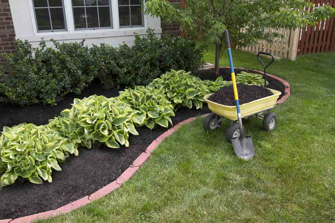 Need Landscaping Design Services For Your Home or Business?