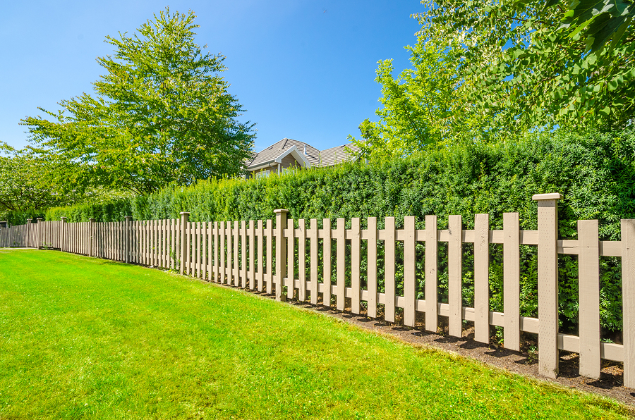 lawn care  landscaping service  u0026 landscaping design