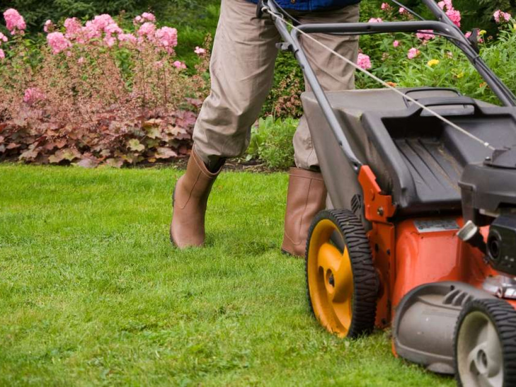 Enjoy a Cleaner, More Attractive Landscape